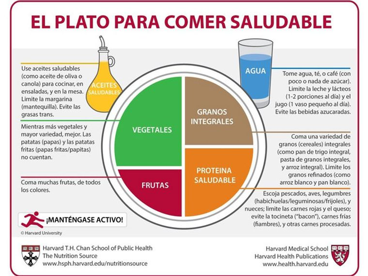 Plato Universidad de Harvard